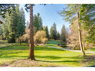 "Photo 24: 20921 96 Avenue in Langley: Walnut Grove House for sale in ""WALNUT GROVE"" : MLS®# R2459997"