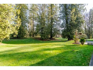"Photo 31: 20921 96 Avenue in Langley: Walnut Grove House for sale in ""WALNUT GROVE"" : MLS®# R2459997"