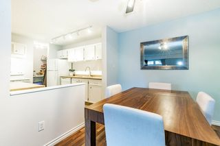 Photo 10: 5712 172 Street in Edmonton: Zone 20 Carriage for sale : MLS®# E4200326