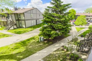 Photo 4: 5712 172 Street in Edmonton: Zone 20 Carriage for sale : MLS®# E4200326