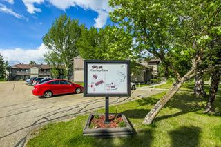 Photo 20: 5712 172 Street in Edmonton: Zone 20 Carriage for sale : MLS®# E4200326