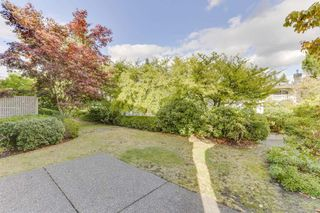 """Photo 22: 163 13888 70 Avenue in Surrey: East Newton Townhouse for sale in """"Chelsea Gardens"""" : MLS®# R2501908"""