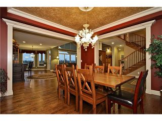 Photo 8: 6915 SATCHELL Road in Abbotsford: Bradner House for sale : MLS®# F1432823
