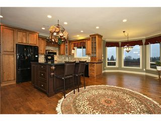 Photo 5: 6915 SATCHELL Road in Abbotsford: Bradner House for sale : MLS®# F1432823