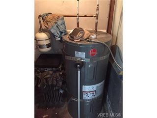 Photo 4: 172 W Burnside Rd in VICTORIA: SW Tillicum Single Family Detached for sale (Saanich West)  : MLS®# 732904