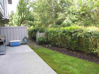 Photo 13: 14 23343 KANAKA WAY in Maple Ridge: Cottonwood MR Townhouse for sale : MLS®# R2164779