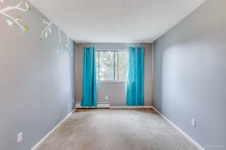 """Photo 13: 220 3921 CARRIGAN Court in Burnaby: Government Road Condo for sale in """"LOUGHEED ESTATES"""" (Burnaby North)  : MLS®# R2173990"""
