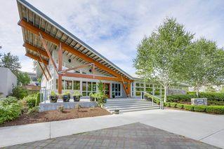 "Photo 15: 221 700 KLAHANIE Drive in Port Moody: Port Moody Centre Condo for sale in ""Boardwalk"" : MLS®# R2206662"