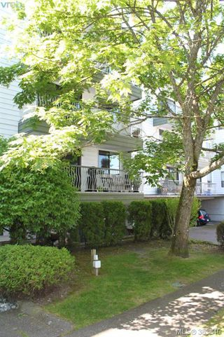 Photo 11: 119 900 Tolmie Avenue in VICTORIA: SE Quadra Condo Apartment for sale (Saanich East)  : MLS®# 383840