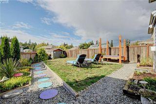 Photo 15: 2426 Driftwood Dr in SOOKE: Sk Sunriver Single Family Detached for sale (Sooke)  : MLS®# 772208