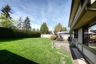 Photo 17: 1129 52A Street in Delta: Tsawwassen Central House for sale (Tsawwassen)  : MLS®# R2251022