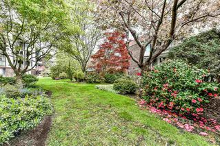 """Photo 18: 212 1521 BLACKWOOD Street: White Rock Condo for sale in """"The Sandringham"""" (South Surrey White Rock)  : MLS®# R2263441"""