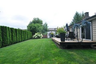 Photo 17: 22787 REID Avenue in Maple Ridge: East Central House for sale : MLS®# R2294455