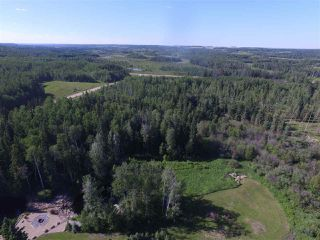 Photo 24: 451059 Rge Rd 283: Rural Wetaskiwin County House for sale : MLS®# E4144222