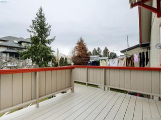 Photo 34: 453 Moss St in VICTORIA: Vi Fairfield West Single Family Detached for sale (Victoria)  : MLS®# 806984