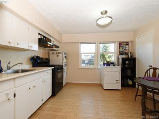 Photo 24: 453 Moss St in VICTORIA: Vi Fairfield West Single Family Detached for sale (Victoria)  : MLS®# 806984