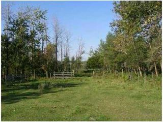 Photo 3: SW CORNER TWP RD 534 & RR 222: Rural Strathcona County Rural Land/Vacant Lot for sale : MLS®# E4148557