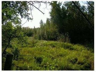 Photo 2: SW CORNER TWP RD 534 & RR 222: Rural Strathcona County Rural Land/Vacant Lot for sale : MLS®# E4148557