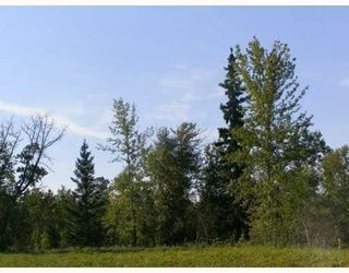 Photo 6: SW CORNER TWP RD 534 & RR 222: Rural Strathcona County Rural Land/Vacant Lot for sale : MLS®# E4148557