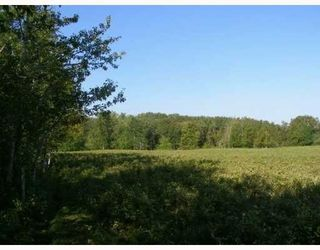 Photo 7: SW CORNER TWP RD 534 & RR 222: Rural Strathcona County Rural Land/Vacant Lot for sale : MLS®# E4148557