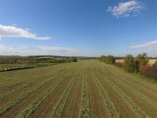 Photo 11: SW CORNER TWP RD 534 & RR 222: Rural Strathcona County Rural Land/Vacant Lot for sale : MLS®# E4148557