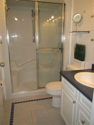 Photo 22: 10662 61 Avenue NW in Edmonton: Zone 15 House for sale : MLS®# E4149137