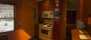 Photo 14: 10662 61 Avenue NW in Edmonton: Zone 15 House for sale : MLS®# E4149137