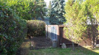 Photo 27: 10662 61 Avenue NW in Edmonton: Zone 15 House for sale : MLS®# E4149137