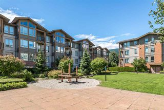 "Photo 19: 407 2601 WHITELEY Court in North Vancouver: Lynn Valley Condo for sale in ""Branches"" : MLS®# R2355121"