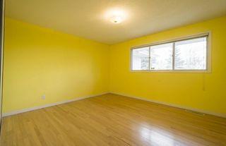 Photo 19: 4815 138 Street in Edmonton: Zone 14 House for sale : MLS®# E4157092