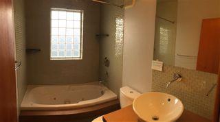 Photo 17: 10662 61 Avenue in Edmonton: Zone 15 House for sale : MLS®# E4160589