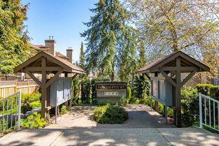 "Photo 19: 52 7188 EDMONDS Street in Burnaby: Edmonds BE Townhouse for sale in ""SYLVAN COURT"" (Burnaby East)  : MLS®# R2378132"