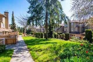 "Photo 18: 52 7188 EDMONDS Street in Burnaby: Edmonds BE Townhouse for sale in ""SYLVAN COURT"" (Burnaby East)  : MLS®# R2378132"