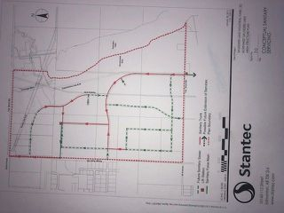 Photo 6: 65 Ave between RR 245 & 250: Rural Leduc County Rural Land/Vacant Lot for sale : MLS®# E4161202
