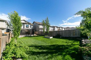 Photo 29: 1430 114B Street in Edmonton: Zone 55 House for sale : MLS®# E4161706