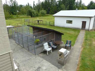 """Photo 15: 28174 LAYMAN Avenue in Abbotsford: Aberdeen House for sale in """"Layman Estates"""" : MLS®# R2386231"""