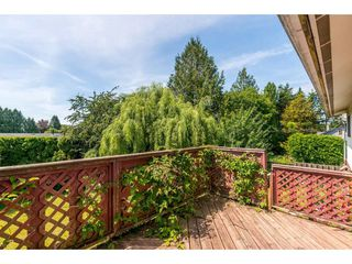 Photo 16: 27166 28A Avenue in Langley: Aldergrove Langley House for sale : MLS®# R2397516