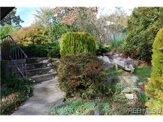 Photo 3: 2528 Forbes St in VICTORIA: Vi Oaklands Single Family Detached for sale (Victoria)  : MLS®# 587827