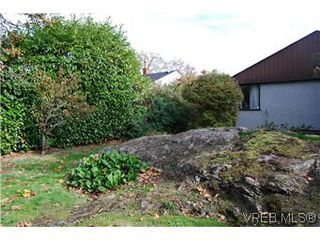 Photo 5: 2528 Forbes St in VICTORIA: Vi Oaklands Single Family Detached for sale (Victoria)  : MLS®# 587827