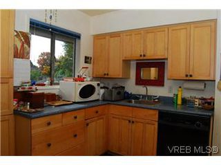 Photo 6: 2528 Forbes Street in VICTORIA: Vi Oaklands Single Family Detached for sale (Victoria)  : MLS®# 300854