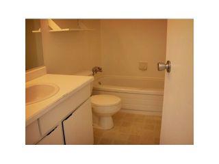 Photo 5: 57 4800 Trimaran in Birchwood Estates: Steveston South Home for sale ()