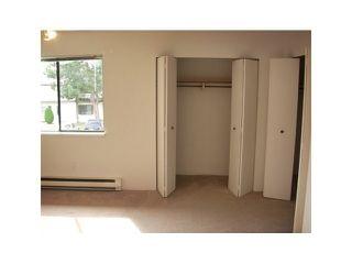 Photo 7: 57 4800 Trimaran in Birchwood Estates: Steveston South Home for sale ()