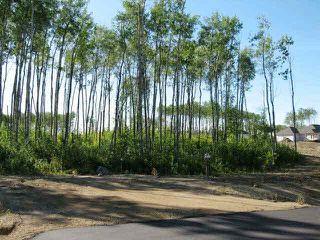 Photo 3: Lot 3 Whitetail Ridge Estates: Rural Bonnyville M.D. Rural Land/Vacant Lot for sale : MLS®# E3394438