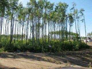 Photo 2: Lot 3 Whitetail Ridge Estates: Rural Bonnyville M.D. Rural Land/Vacant Lot for sale : MLS®# E3394438