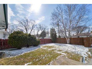 Photo 15: 484 Greene Avenue in WINNIPEG: East Kildonan Residential for sale (North East Winnipeg)  : MLS®# 1507674