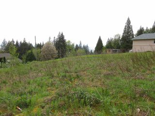 Photo 2: 7356 MARBLE HILL Road in Chilliwack: Eastern Hillsides Land for sale : MLS®# R2057080