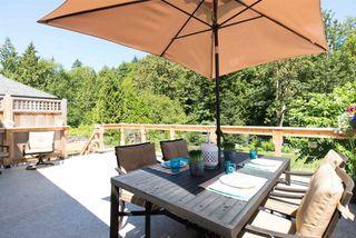 "Photo 4: 9086 214B Street in Langley: Walnut Grove House for sale in ""WALNUT GROVE"" : MLS®# R2087590"