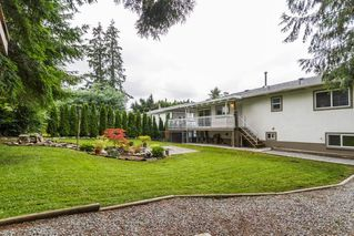 Photo 19: 21614 SPRING Crescent in Maple Ridge: West Central House for sale : MLS®# R2096970