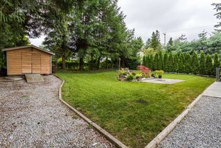Photo 20: 21614 SPRING Crescent in Maple Ridge: West Central House for sale : MLS®# R2096970