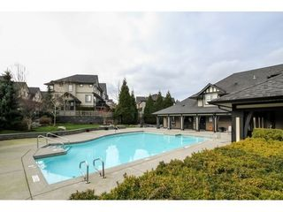 Photo 20: 101 15175 62A Ave in Surrey: Home for sale : MLS®# F1433640